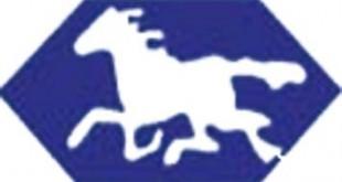 white-horse-pharma-logo